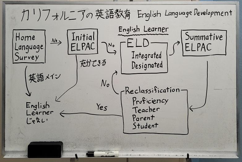 カリフォルニアの英語教育 ELDの流れ